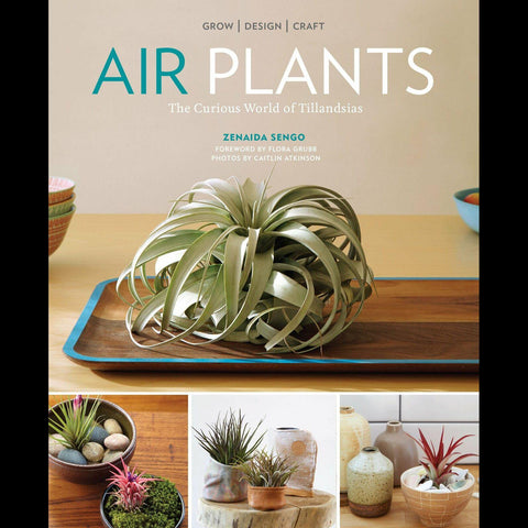 Air Plants: The Curious World of Tillandsias-Books-Workman Publishing Co.-PaxtonGate