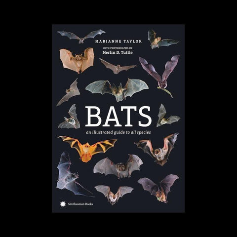 Bats: An Illustrated Guide to All Species-Books-Penguin Random House-PaxtonGate