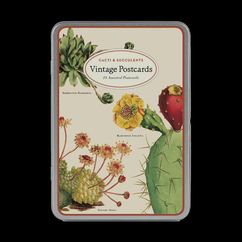 Postcard Set: Cacti & Succulents-Cards-Cavallini & Co.-PaxtonGate