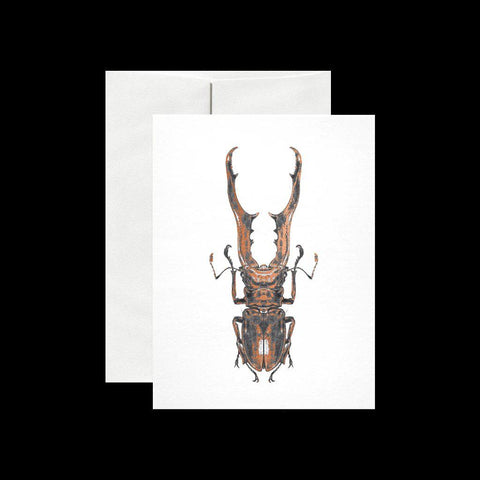Stag Beetle Card-Cards-Open Sea Design Co.-PaxtonGate