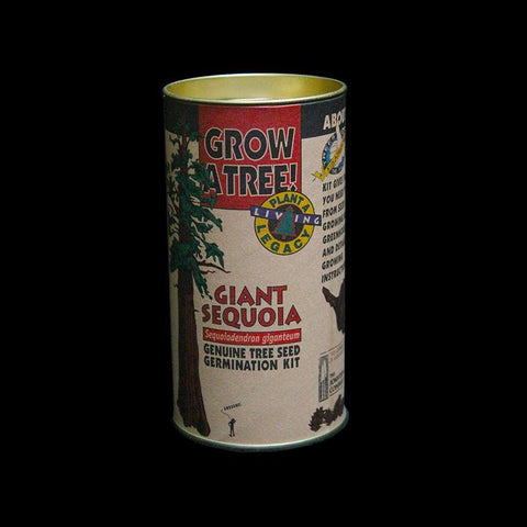 Giant Sequoia Seed Grow Kit-Pots&Mntg-Jonsteen Co.-PaxtonGate