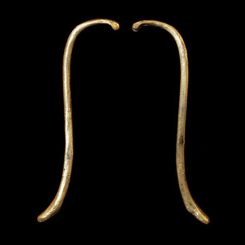 Raccoon Baculum Earrings Bronze-Earrings-Hart-PaxtonGate