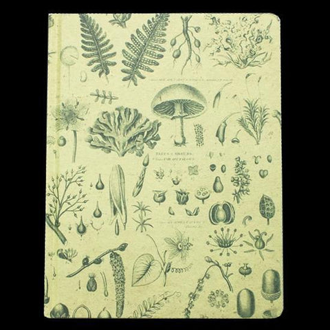 Plants and Fungi Hardcover Notebook-Notebooks-Cognitive Surplus-PaxtonGate