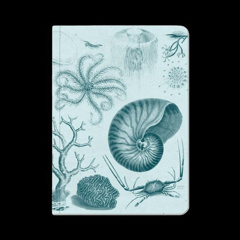 Shallow Sea Softcover Notebook-Notebooks-Cognitive Surplus-PaxtonGate