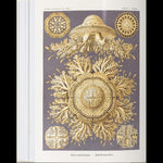 The Art and Science of Ernst Haeckel-Books-Taschen-PaxtonGate