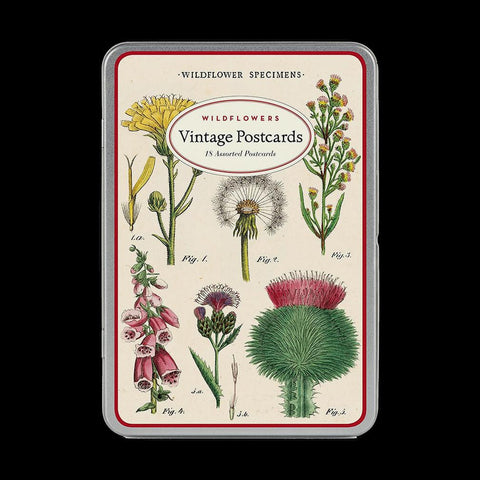 Postcard Set: Wildflowers-Cards-Cavallini & Co.-PaxtonGate