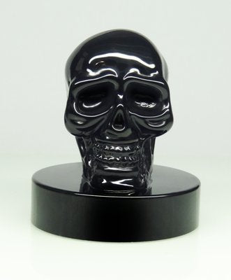Classic Black Skull Fountain Pen