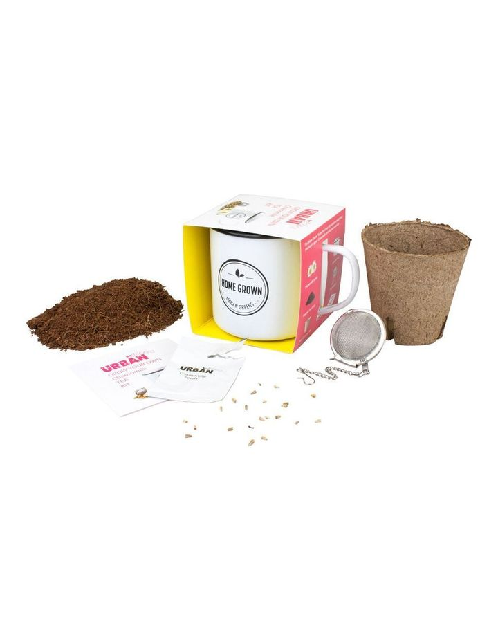 Grow Your Own Chamomile Tea Kit