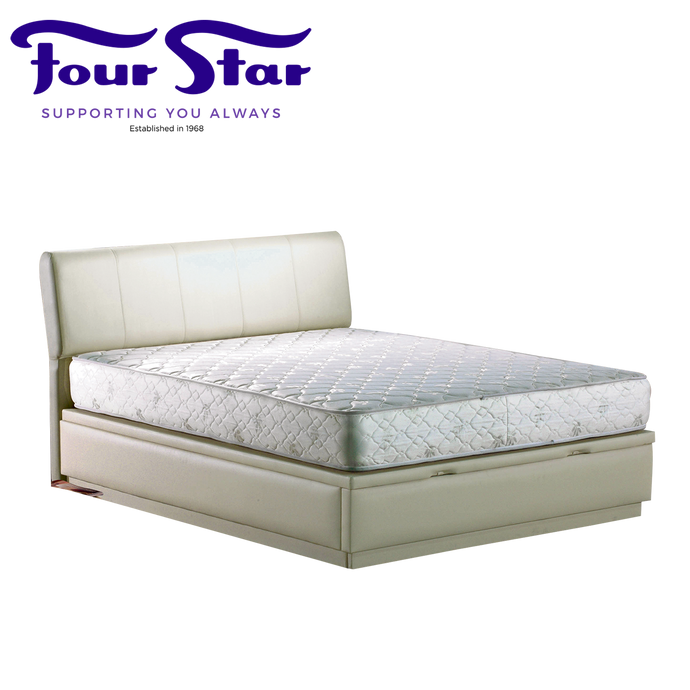 CARIS Queen Mattress