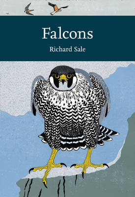 Falcons (Collins New Naturalist Library) (New Naturalist Library: A Survey of British Natural History)