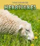 Herbivores (Read and Learn: What Animals Eat)