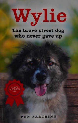 Wylie: The Brave Street Dog Who Never Gave Up