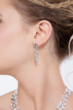 Load image into Gallery viewer, Four Splash Drop Earrings SER3