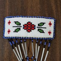 Beaded Hair Barrettes