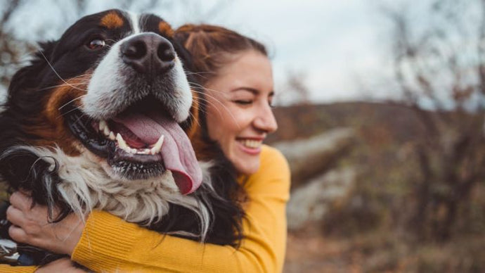How to Keep Your Pets Safe & Happy During the Coronavirus Pandemic
