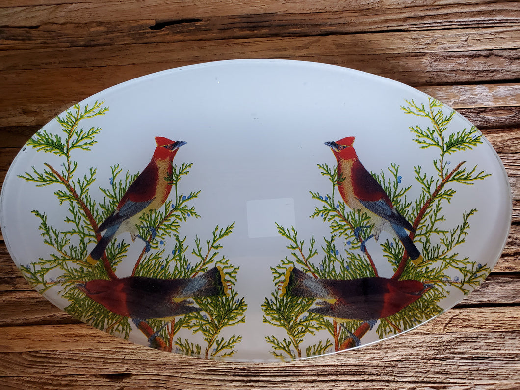 Cardinal Tempered Glass Plate/Dish