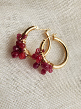 Load image into Gallery viewer, Simon & LuLu 14K Gold Ruby Hoops