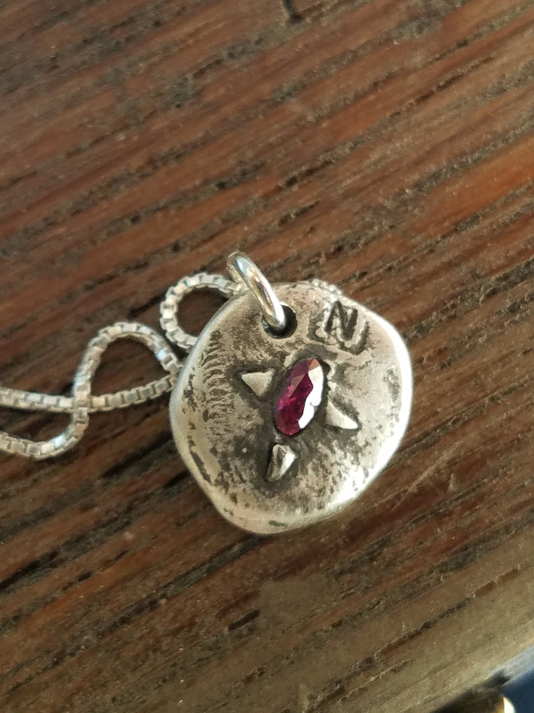 Simon & LuLu Compass Necklace with Embedded Ruby