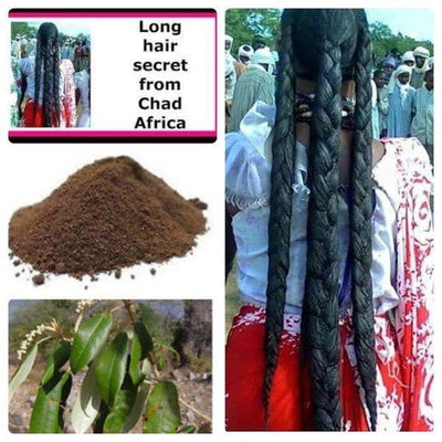Traditional Chebe Powder (Made in Chad) - Health n Beauty Hub
