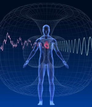 Human body with magnetic fields