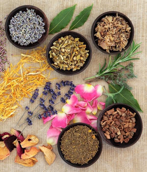 Various herbs in bowls and flowers