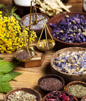 Various medicinal herbs and flowers with scales