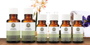 Essential Oil - Introductory Starter Kit