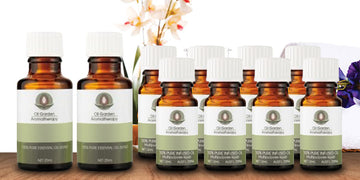 Essential Oil - Practitioner Starter Kit