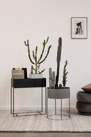 Plant Box: Warm Grey