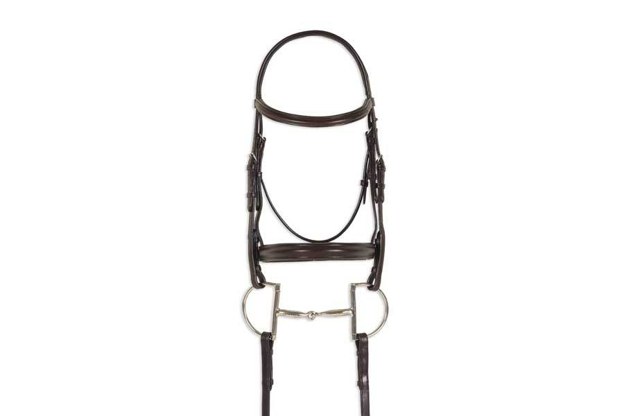 Ovation Breed Plain Raised Padded Bridle - Arabian