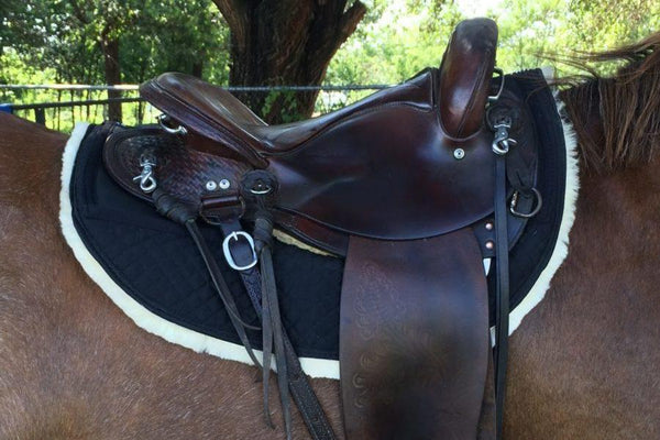 ThinLine Full Sheepskin Endurance Round Skirt Saddle Pad