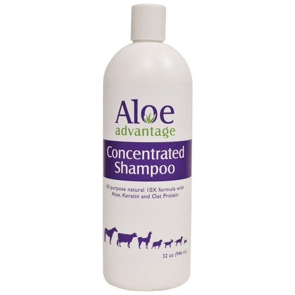 ALOE ADVANTAGE CONCENTRATED SHAMPOO 10X