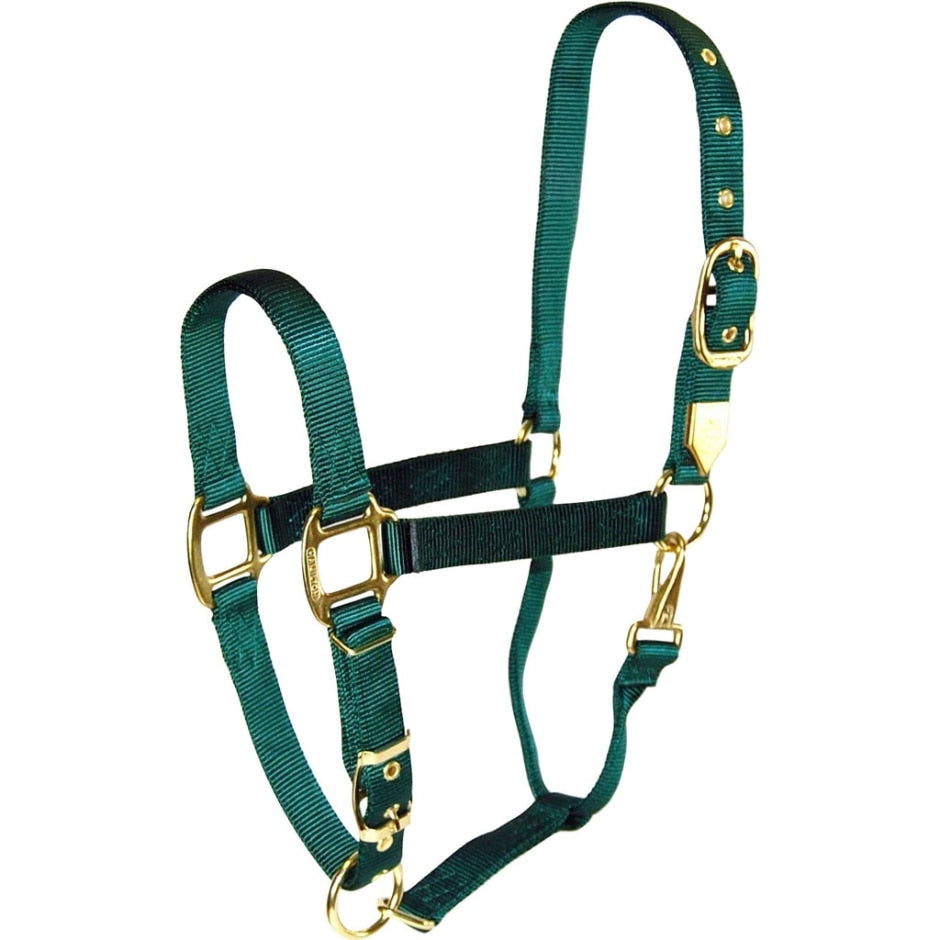 HAMILTON ADJUSTABLE CHIN HORSE HALTER WITH SNAP