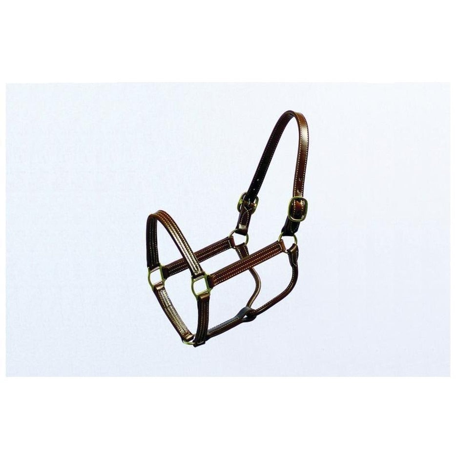 THOROUGHBRED HALTER