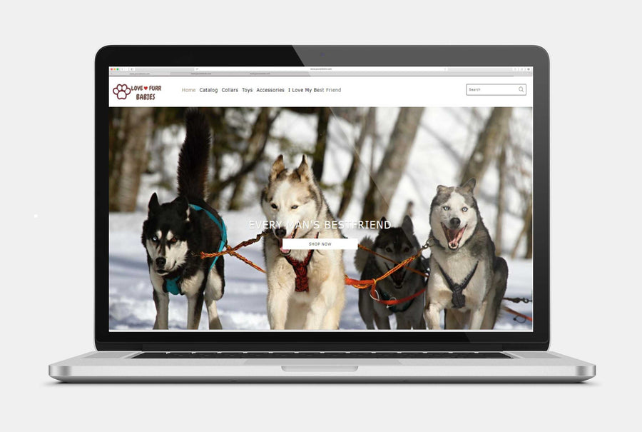 Thrill Outdoors Shopify Store ( Premium Theme ) | Camping