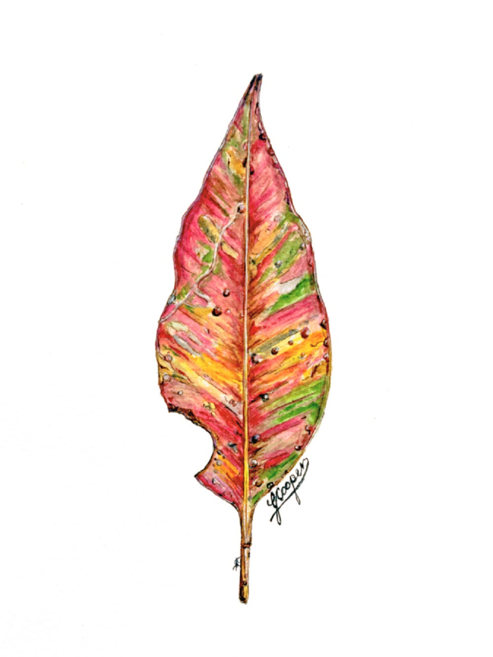 Red Leaf - Greeting Card