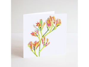 Kangaroo Paws Mini Card