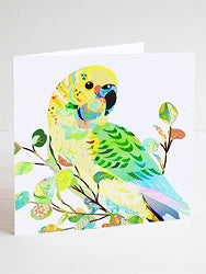 Budgerigar Greeting Card
