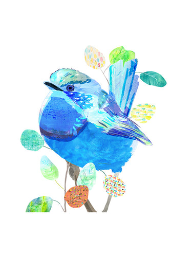Splendid Fairy-Wren Art Print