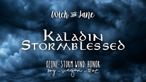 Kaladin Stormblessed - August Book Bae Exclusive (SHIPS 8/10-8/15)