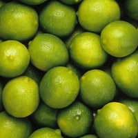 Essential Oil of Lime