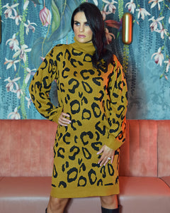 Christina Leopard Print Jumper Dress Long Sleeves Cosy Knit