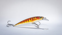 Load image into Gallery viewer, Hard Plastic Minnow Fishing Lure 5pcs
