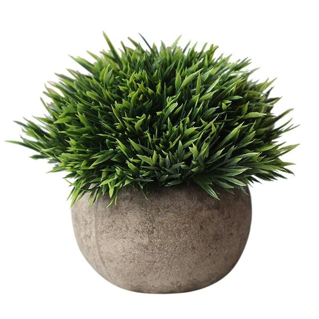 Potted Green Grass - Rumor Flowers