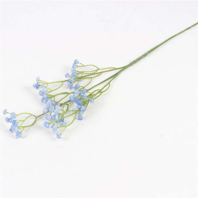 Gypsophila Flower - Rumor Flowers
