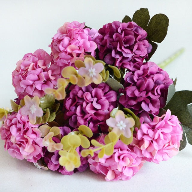 10 Beautiful Hydrangea Heads - Rumor Flowers