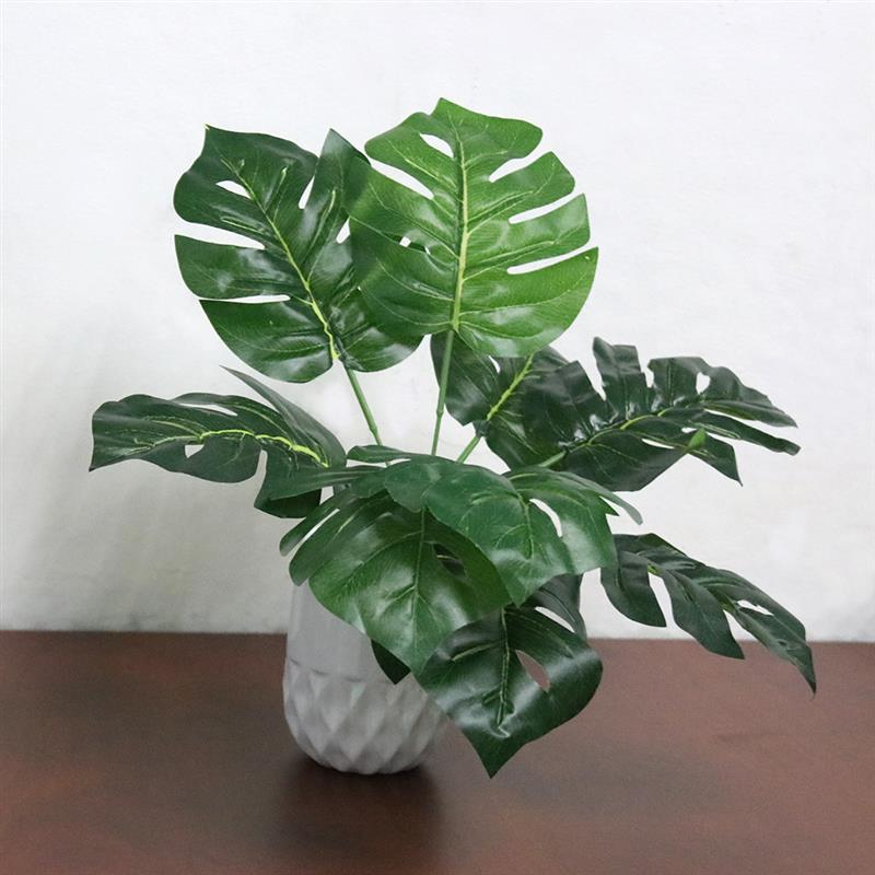 Monstera Potted Plant - Rumor Flowers