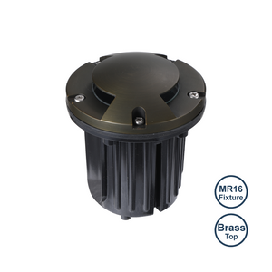 IGL21B MR16 WELL LIGHT