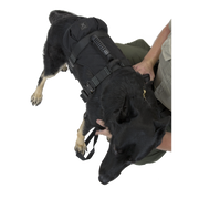 K9 ProSeries Rappel Harness