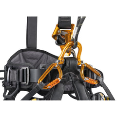 ASTRO BOD FAST Harness International Version
